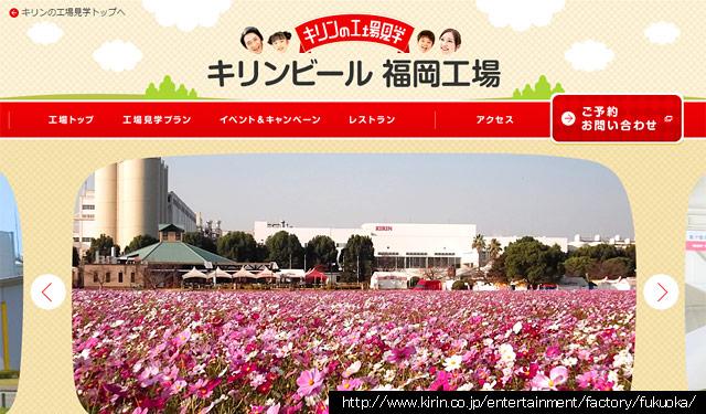 キリンビール福岡工場のコスモスが満開