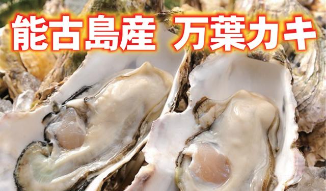 能古島産の「万葉牡蠣」 提供開始