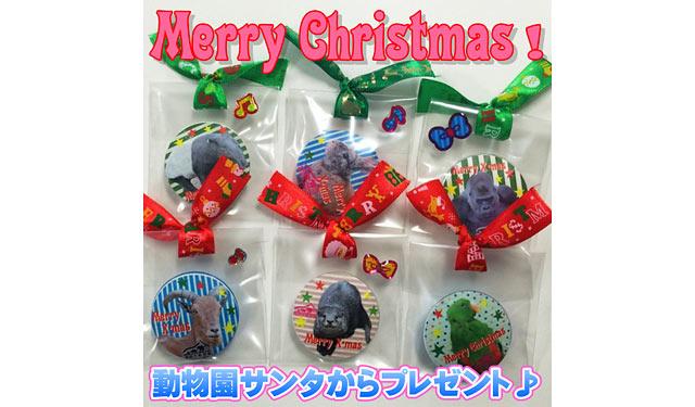 福岡市動物園がクリスマス企画、ヘビサンタも