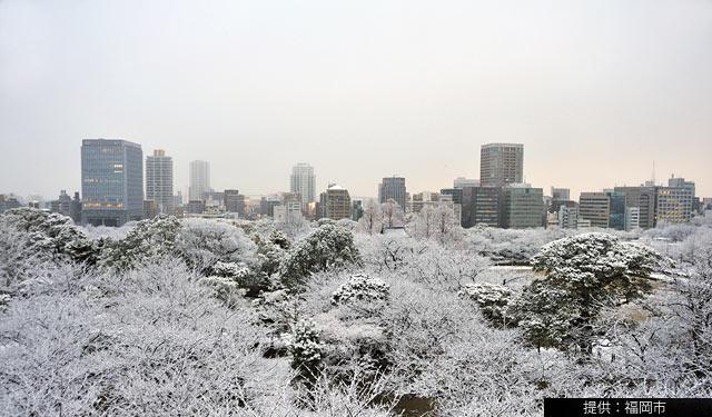 今年の冬至は19年に1度の「朔旦冬至」