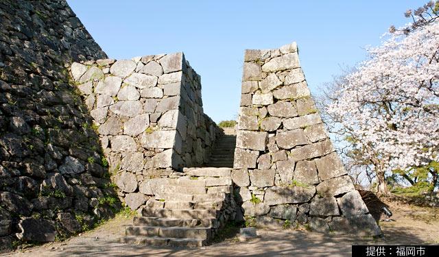 福岡城の天守台が補修のため閉鎖