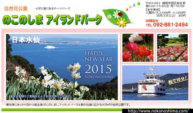能古島の冬の風物詩「日本水仙」が見頃