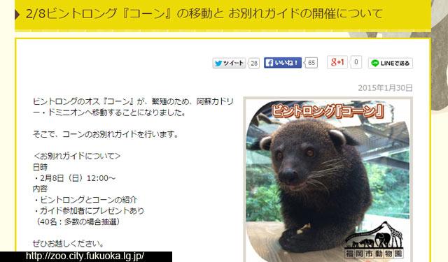 福岡市動物園がビントロングのお別れガイド開催