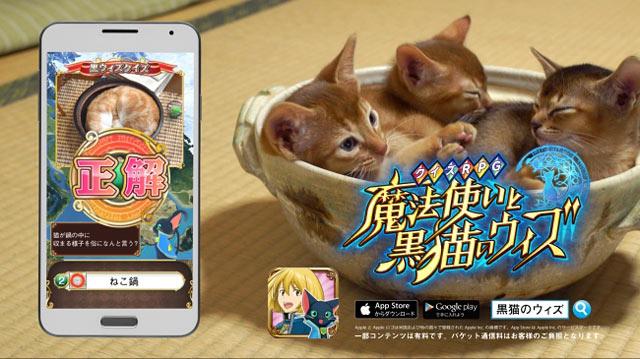 黒猫のウィズ 新テレビCM 福岡地域で放送開始