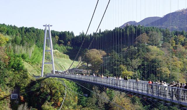 """GWお出かけ情報「九重""""夢""""大吊橋」(大分県)"""