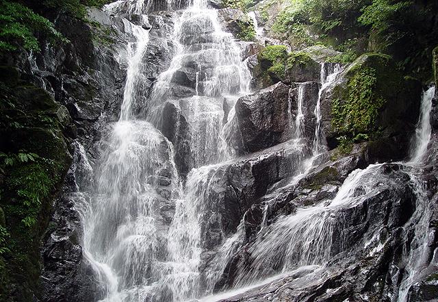 「そうめん流しにヤマメ釣り」白糸の滝 13日に滝開き