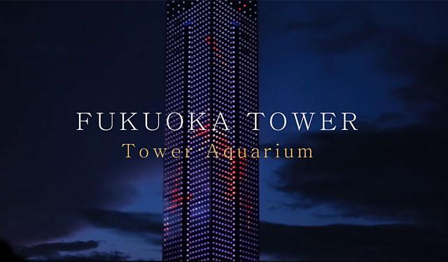 福岡タワーが金魚イルミの紹介動画公開