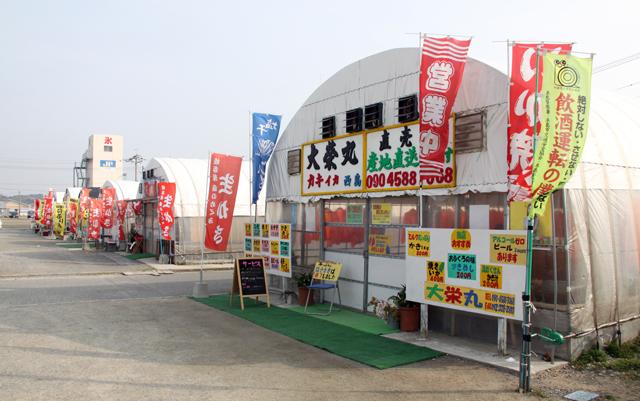 糸島の「カキ小屋」が人気 新鮮な採れたてのカキはいかが?