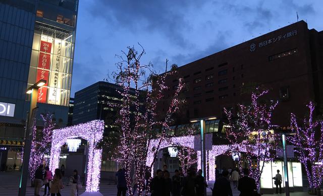 JR博多駅前広場で2年ぶりのさくらイルミネーション実施!