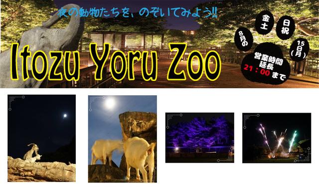 到津の森公園で「ITOZU YORU ZOO~夜の動物園~」