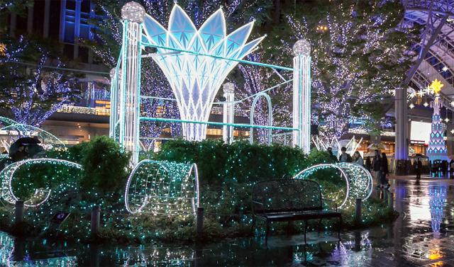 「光の街・博多」約80万球の壮大なイルミネーション