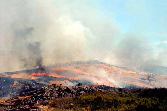 平尾台の里山環境を守り、平尾台に春を呼ぶ「野焼き」