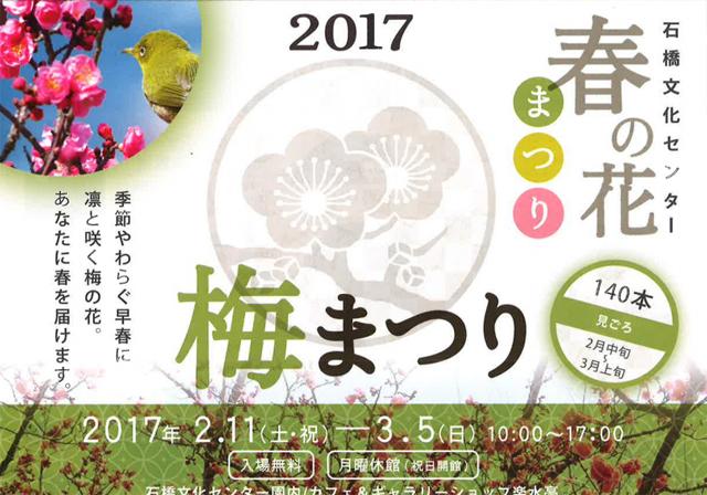 石橋文化センター「梅まつり」春の花まつり2017