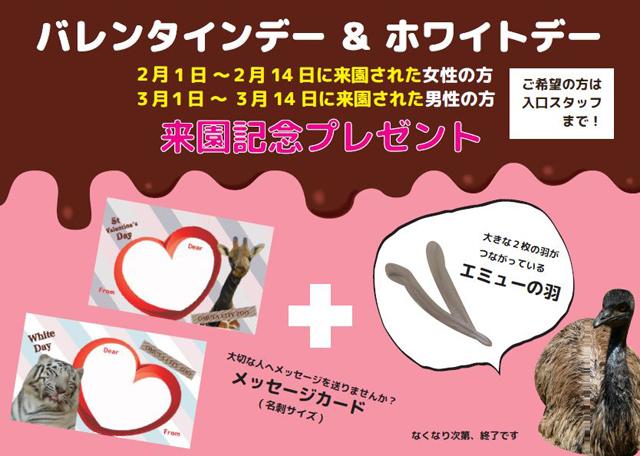 大牟田市動物園「バレンタインデー来園記念プレゼント」