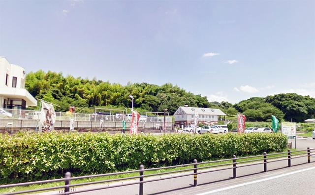立花寺緑地リフレッシュ農園「桜まつり」