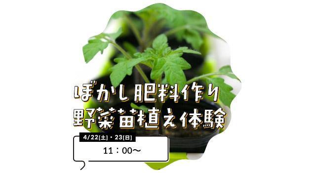 ぼかし肥料作り野菜苗植え体験