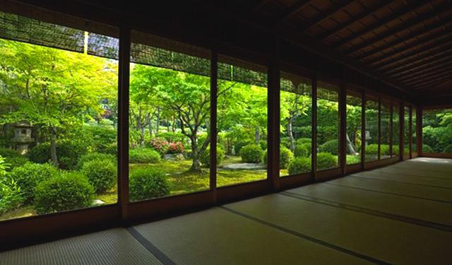 大濠公園日本庭園で「新緑の会」開催へ