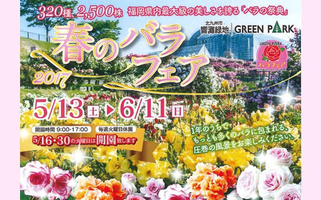 福岡県内最大級のバラの祭典「春のバラフェア」開催