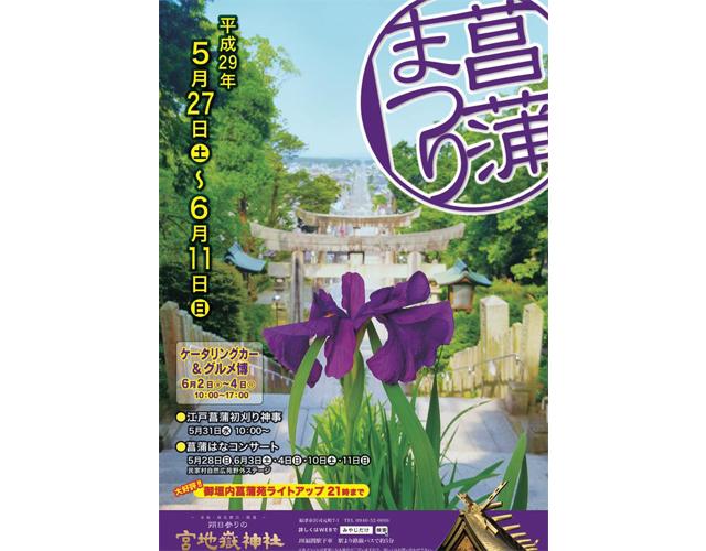 宮地嶽神社で「菖蒲まつり」開催 ライトアップあり