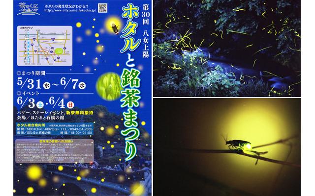 「第30回八女上陽ホタルと銘茶まつり」開催