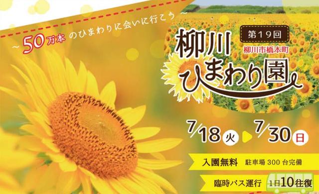 柳川の夏の観光スポット「柳川ひまわり園」