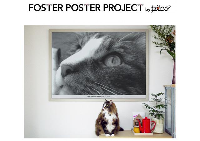 福岡三越全館『ねこ・猫・ネコづくし』にて「PECO NEKO館」開催へ