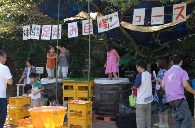 田主丸で「巨峰ワイン祭り」開催!足踏みジュース搾り体験も