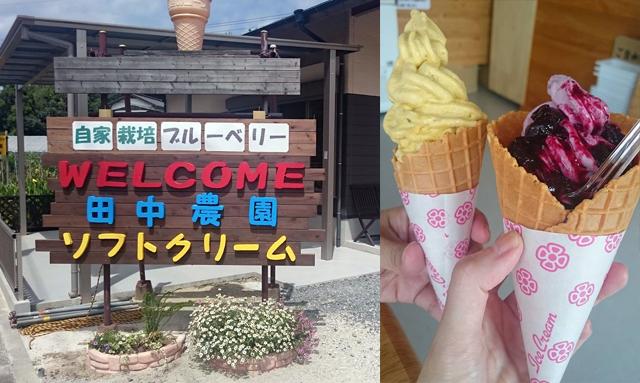 旬の果物や野菜を使った田中農園のソフトクリームが人気