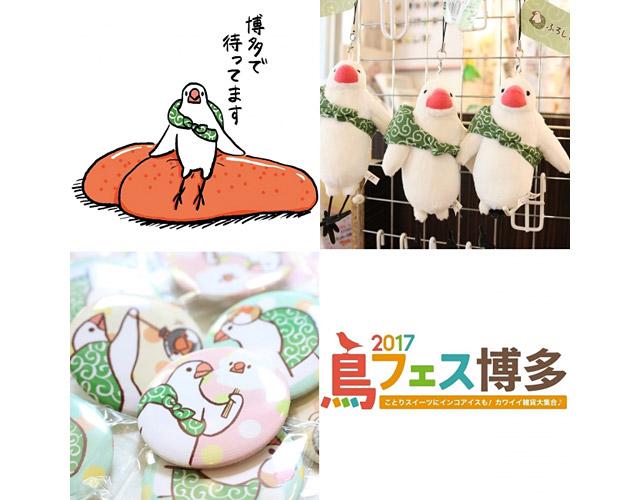 『鳥フェス博多2017』のチケットが「ふろしき文鳥」とコラボ