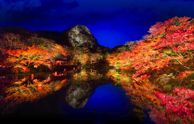 鍋島藩ゆかりの15万坪の庭園で「紅葉まつり」開幕!
