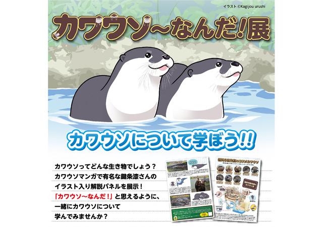 福岡市動物園で「カワウソ~なんだ!展」開催