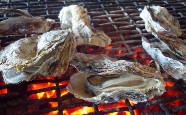 恒見漁協直営「恒見 焼き牡蠣喰い処」かき小屋12月オープン!