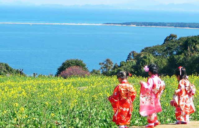 能古島のひな祭り「着物レンタル&着付けサービス」菜の花と一緒に節句の記念撮影