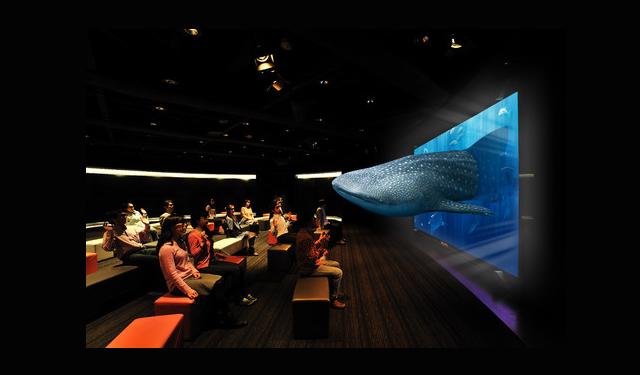 イオンモール福岡 3Dソニーアクアリウム~沖縄『美ら海』の世界~