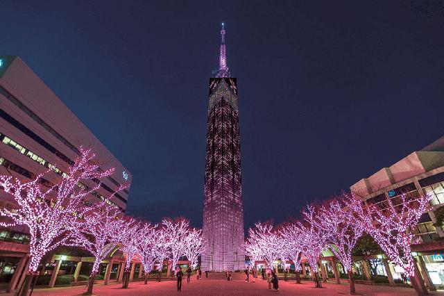 福岡タワー「桜文様」イルミネーション 3月16日~31日点灯