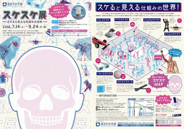 スケると見える仕組みの世界!福岡市科学館『スケスケ展』7月14日~9月24日開催