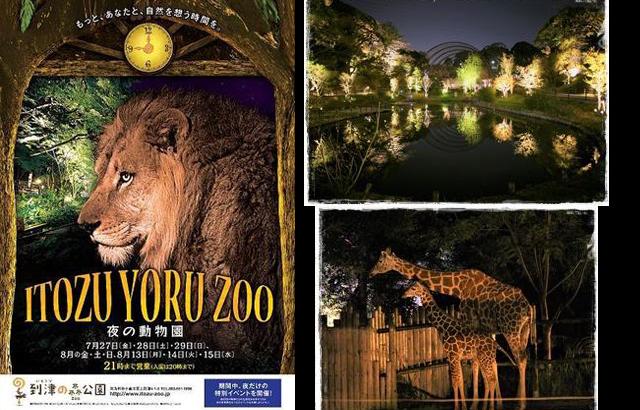 幻想的な夜の世界へ「ITOZU YORU ZOO ~夜の動物園~」