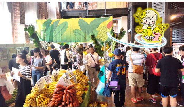世界中の珍しいバナナが大集合!「門司港バナナ博物館2018」開催へ!