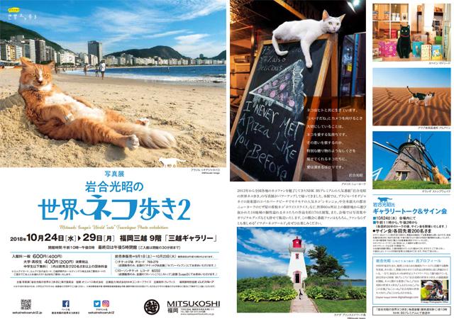 福岡三越「写真展 岩合光昭の世界ネコ歩き2」10月29日まで!