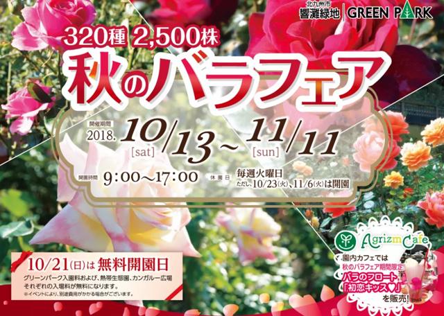グリーンパーク「秋のバラフェア」開催中!11月11日まで!