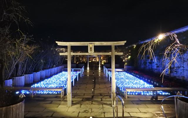 つばめの杜広場「参道光の道」鉄道神社参道をライトアップ