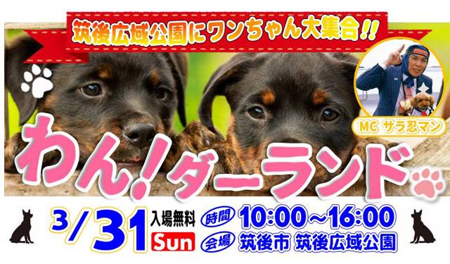 ワンちゃん大集合!九州最大規模のペットフェス「 わん!ダーランド」開催決定!