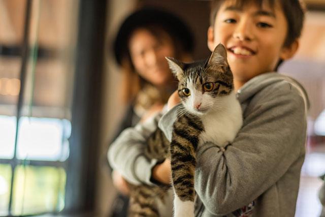 大牟田市のお隣、荒尾市に保護猫譲渡ステーションを併設したジュエリーブランド「キャットン」工房&実店舗がオープン