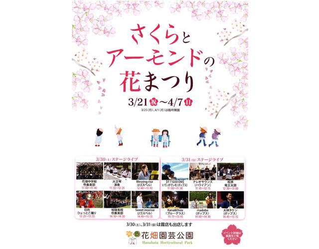 花畑園芸公園「さくらとアーモンドの花まつり2019」楽しいイベントや露店、花畑マルシェなど盛りだくさん!
