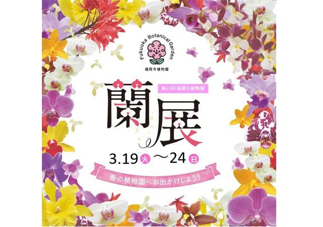 「第21回福岡市植物園蘭展」ラン約400鉢を展示!ガーデントレインやガーデンコンサートも!