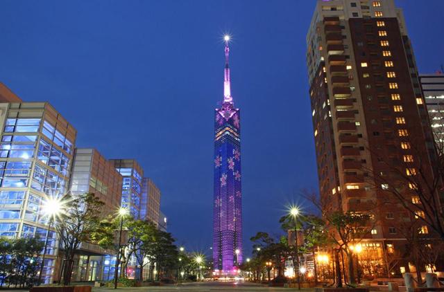 福岡タワー「桜イルミネーション」点灯!4月14日まで