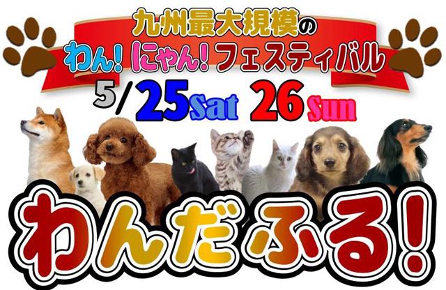 「九州最大級のペットフェス わんだふる!」筑後広域公園で開催!