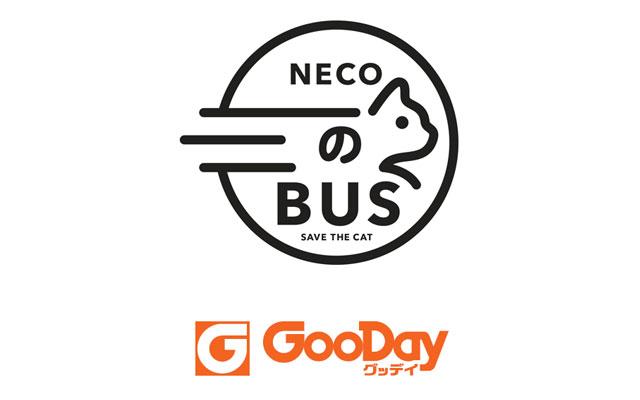 グッデイ久留米野中店に「ネコのバス」ホゴネコが家族と出会う譲渡会開催へ