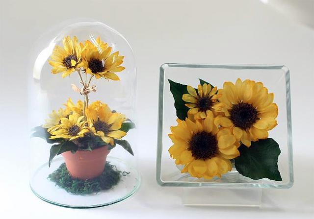 四季折々の花々のボトルフラワー50点を展示!久留米市で「夏のボトルフラワー展」開催