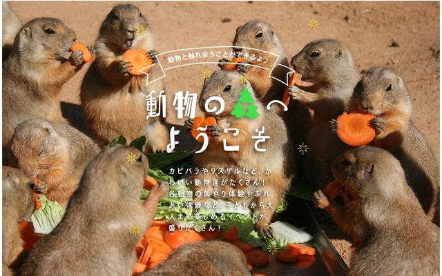 海の中道海浜公園「動物の森」動物たちとふれあえる自然動物園 約50種 500点の動物たち